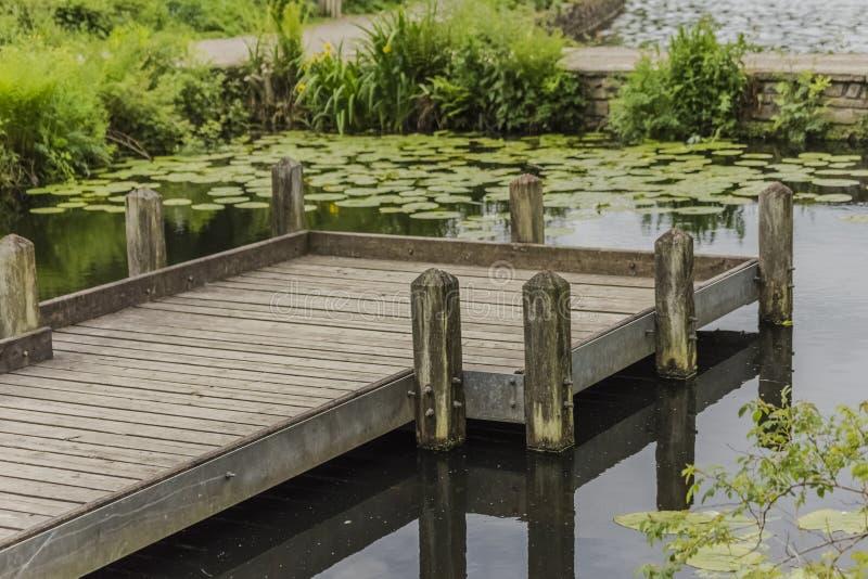 站立在池塘的木码头在郊野公园 免版税库存图片