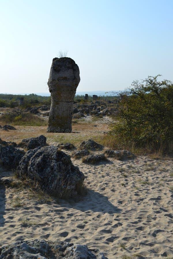 站立在沙子的大长的石头在一个热的夏天早晨 免版税库存图片