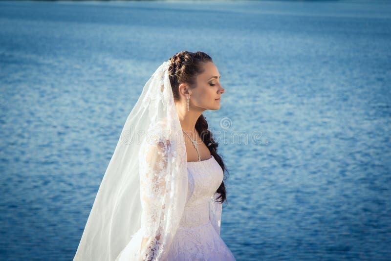 站立在河附近的新娘 库存图片