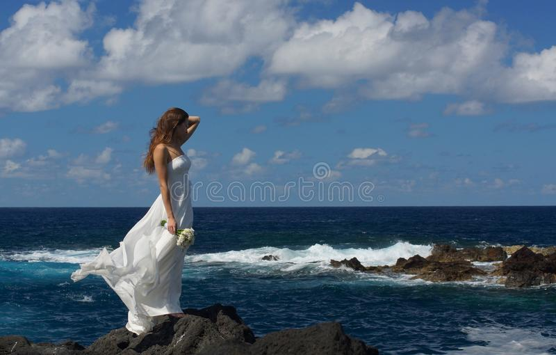 站立在海岸,圣地米格尔海岛,亚速尔群岛的岩石的婚礼礼服的年轻未婚妻 库存图片