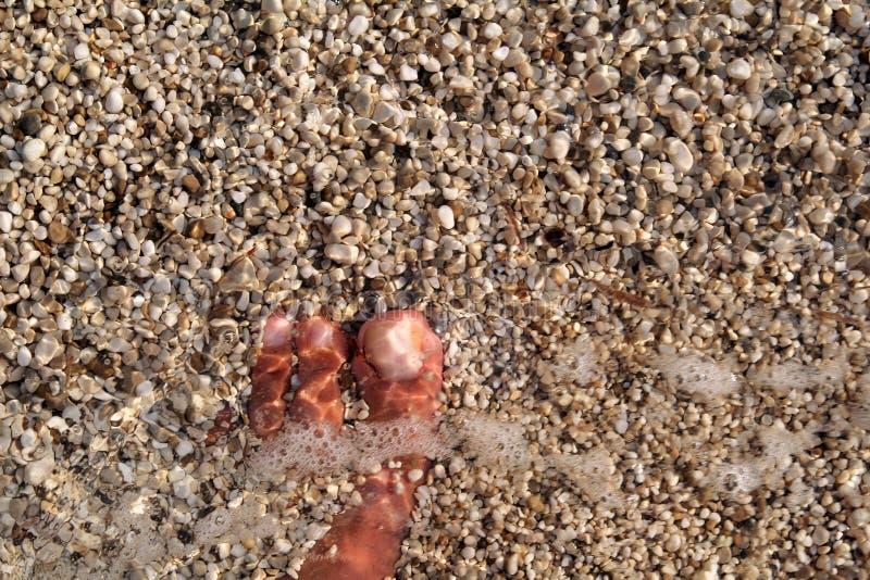站立在海滩的人顶视图赤脚 淹没与下面广泛石头的底部、人的腿和脚纹理在海 库存图片