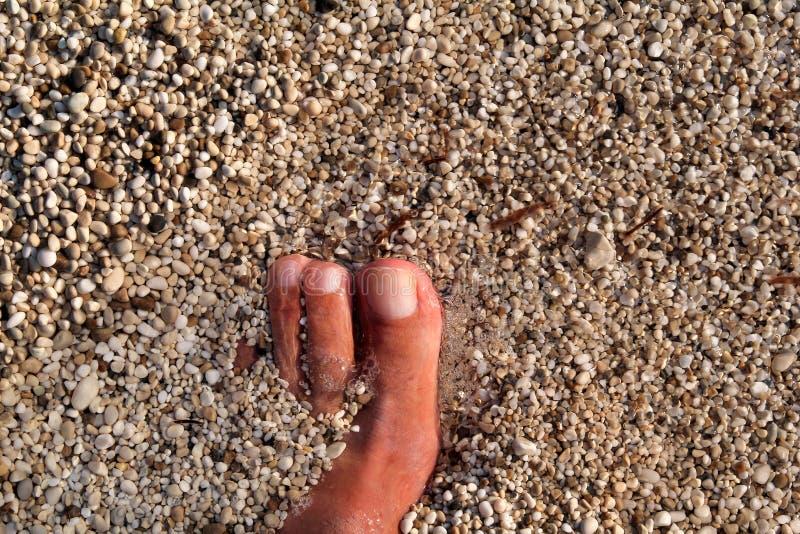 站立在海滩的人顶视图赤脚 淹没与下面广泛石头的底部、人的腿和脚纹理在海 图库摄影
