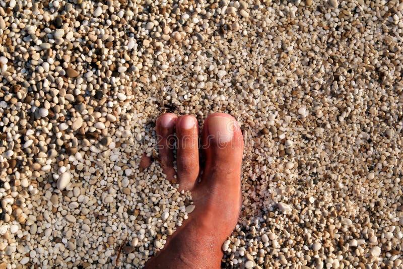 站立在海滩的人顶视图赤脚 淹没与下面广泛石头的底部、人的腿和脚纹理在海 免版税库存图片