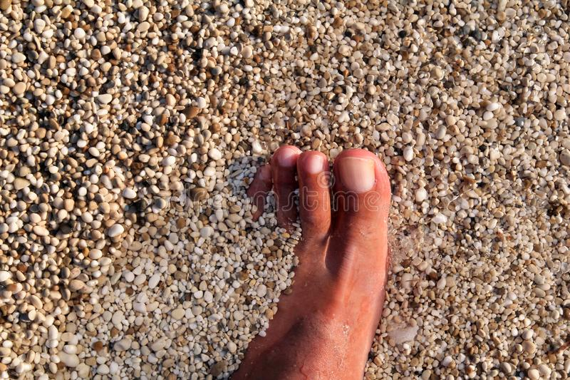 站立在海滩的人顶视图赤脚 淹没与下面广泛石头的底部、人的腿和脚纹理在海 免版税库存照片