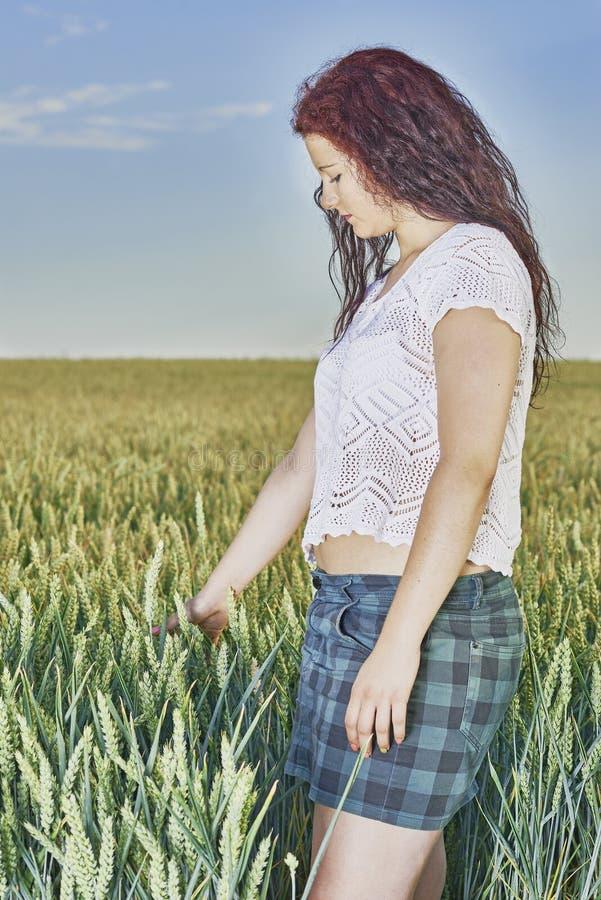 站立在玉米田的女孩 免版税库存图片