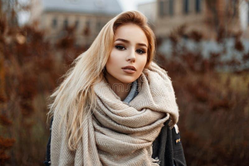 站立在秋天公园的一条温暖的围巾的美丽的少妇 免版税库存图片