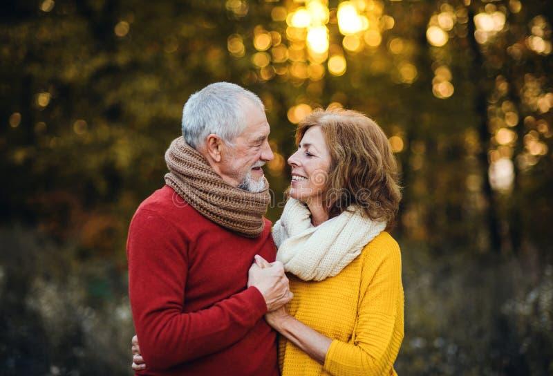 站立在秋天自然的一对资深夫妇在日落,看彼此 免版税库存图片