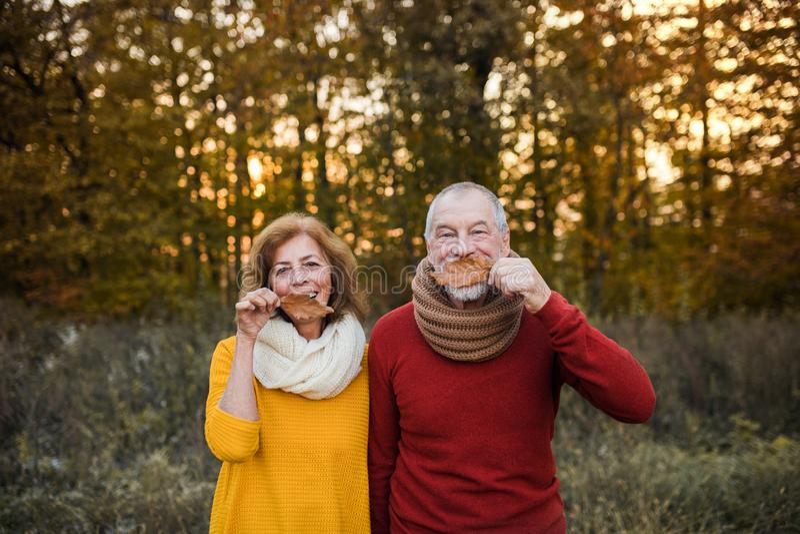 站立在秋天自然的一对资深夫妇在日落,获得乐趣 图库摄影