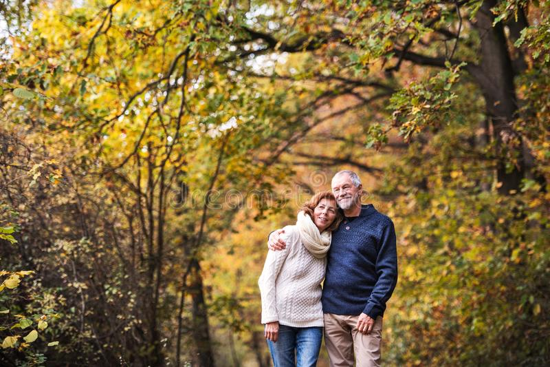 站立在秋天自然的一对资深夫妇的画象 复制空间 库存照片