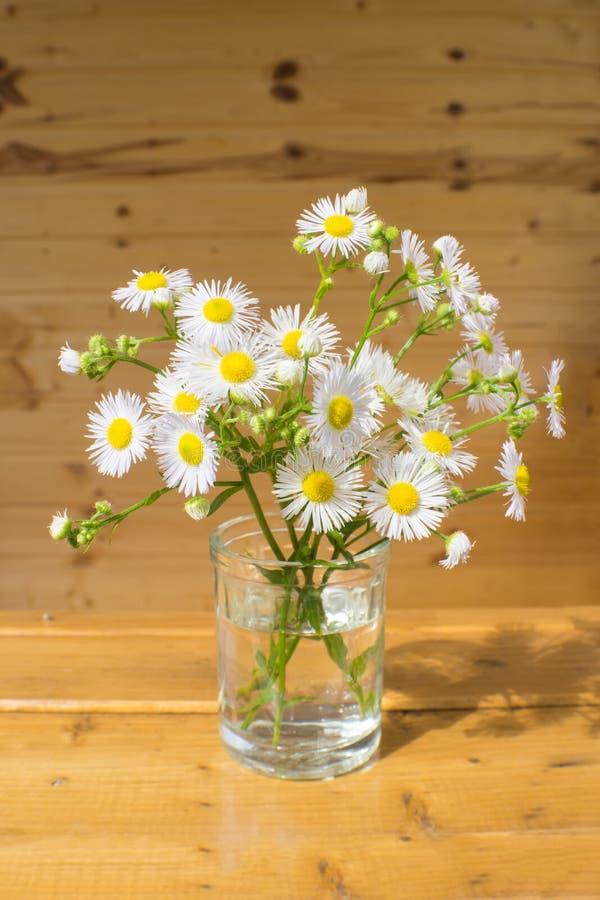 站立在窗口基石的白花小花束  免版税库存照片
