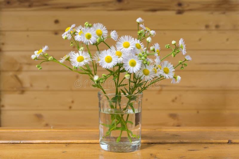 站立在窗口sil的白花小花束  免版税库存图片