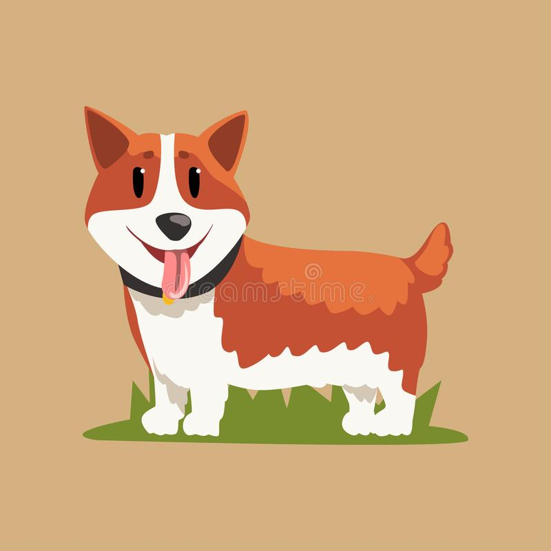 站立在绿草的滑稽的红发威尔士小狗 库存例证