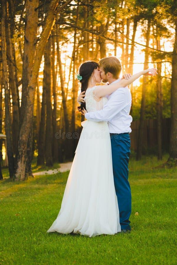 站立在绿草的结合新婚佳偶 库存图片