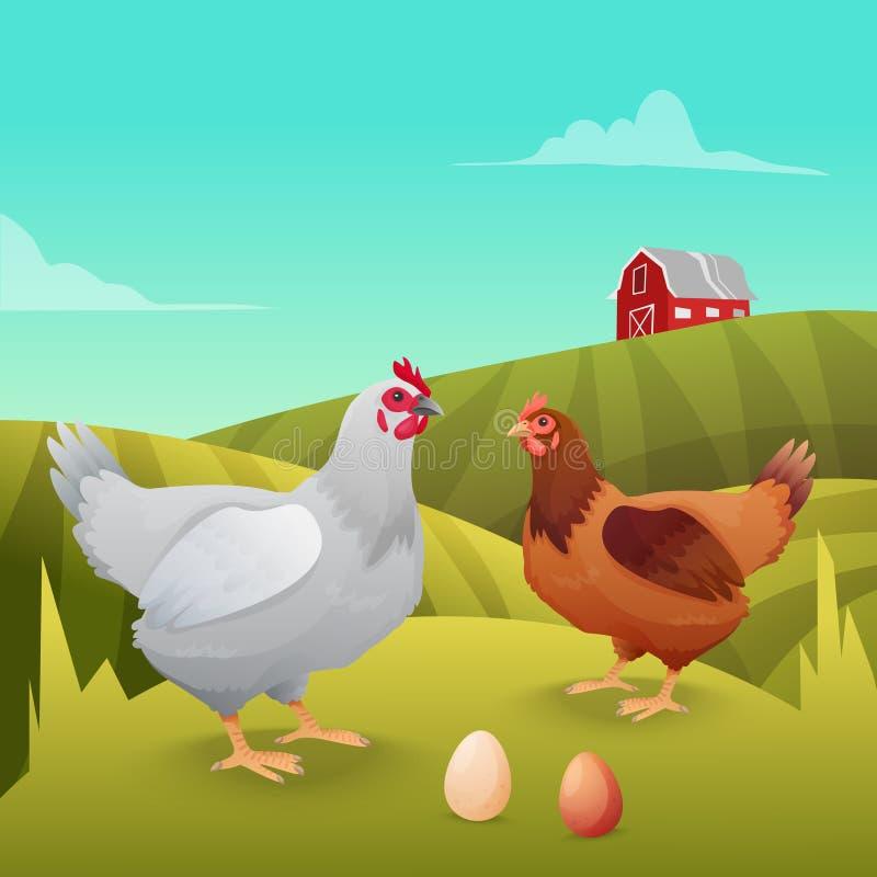 站立在草的母鸡有农厂背景 皇族释放例证