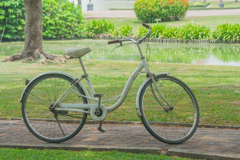 站立在走道的减速火箭的自行车有绿草背景 库存图片