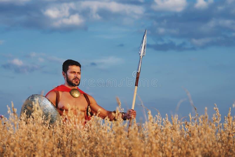 站立在领域的肌肉中世纪战士 库存图片