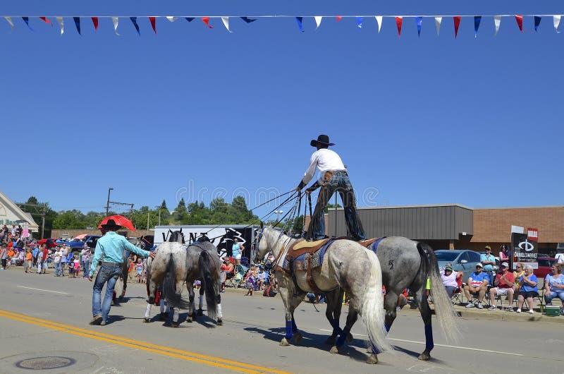 站立在马的牛仔在游行 图库摄影