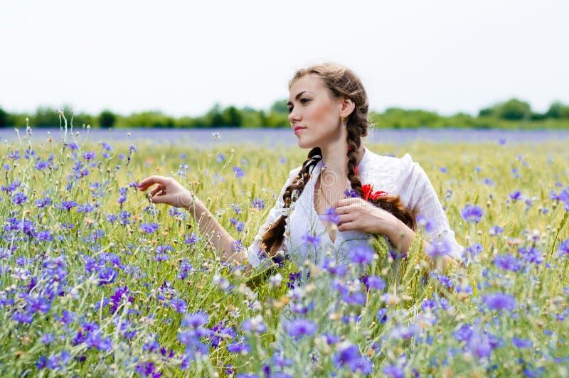 站立在黄色麦子和bluette的美丽的女孩 库存图片