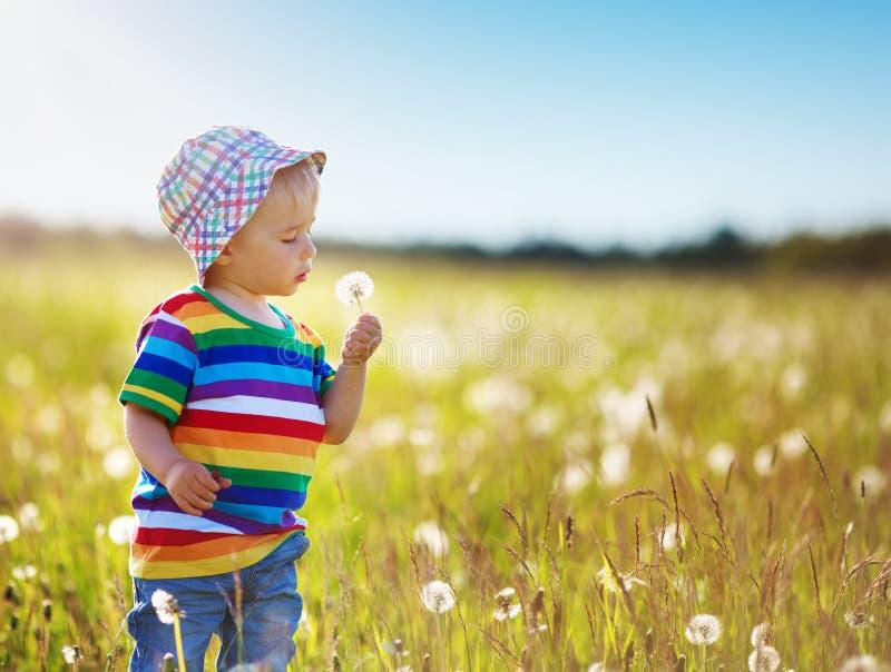 站立在fieald的草的男婴用蒲公英 图库摄影