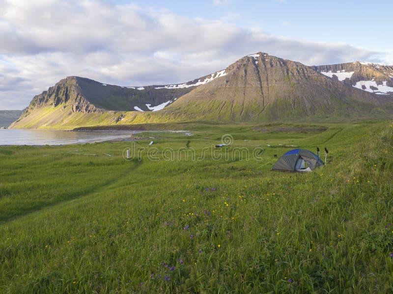 站立在Hloduvik有绿草草甸, Skalarkambur山的,木日志小海湾露营地的单独小帐篷和 免版税图库摄影