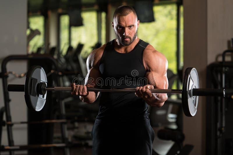 站立坚强在健身房和行使与杠铃的大人二头肌 免版税库存图片