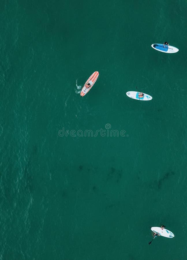 站立漂浮在海洋的桨 图库摄影