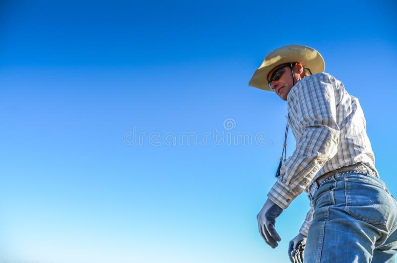 站立的牛仔高 免版税库存照片