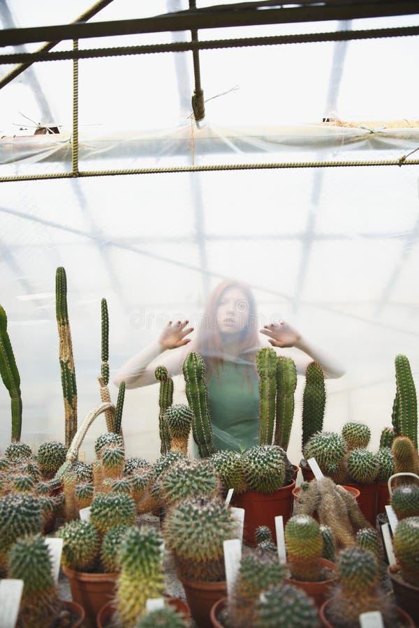 站立绿叶的俏丽的女孩近的植物 图库摄影