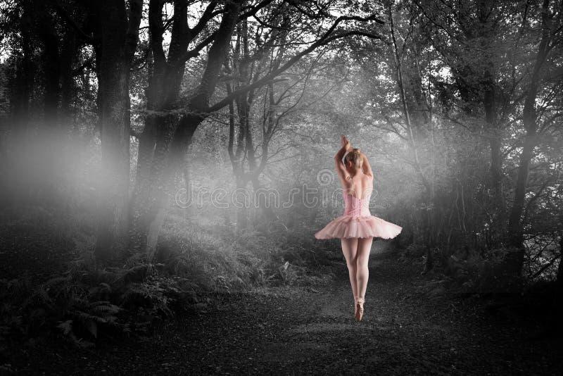 站立en pointe的芭蕾舞女演员的综合图象 图库摄影