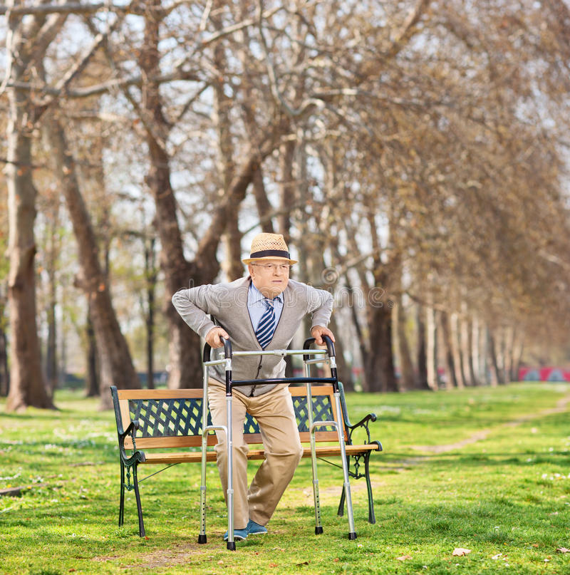 站起来与步行者的前辈在公园 免版税库存图片