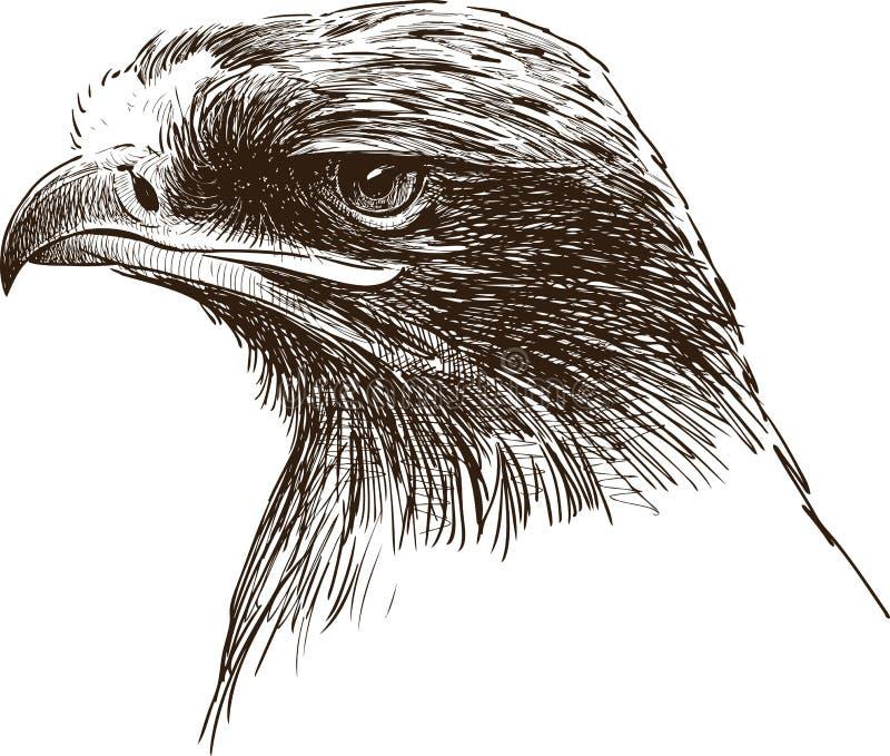 站起来接近的老鹰题头的立场 库存例证