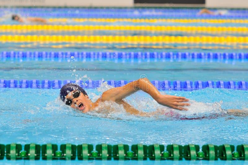 竞争在罗马尼亚国际冠军游泳的迪纳莫队水池的未知的游泳者 免版税库存图片