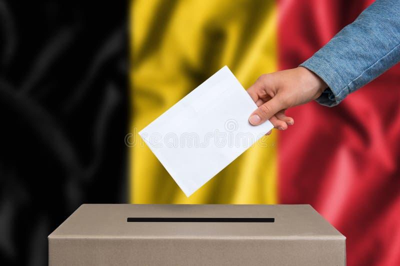 竞选在比利时-投票在投票箱 库存图片