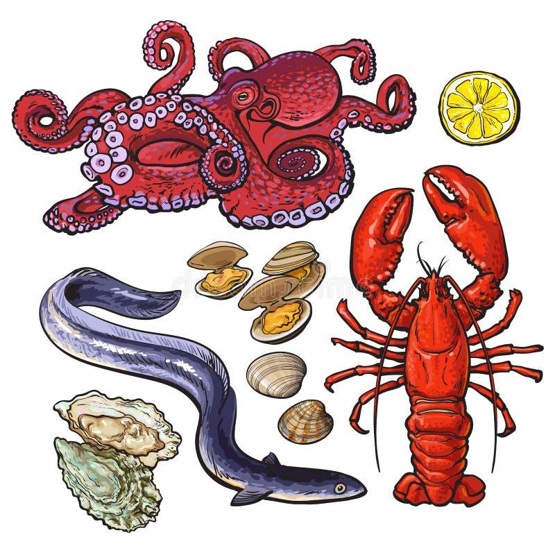 章鱼龙虾鳗鱼淡菜牡蛎海鲜汇集 库存例证