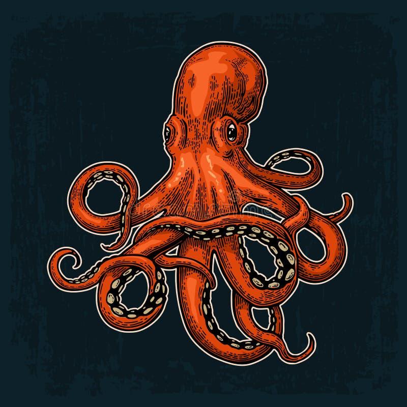 章鱼 海怪 向量例证