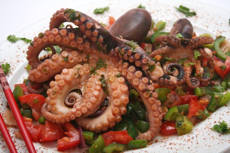 章鱼 免版税图库摄影