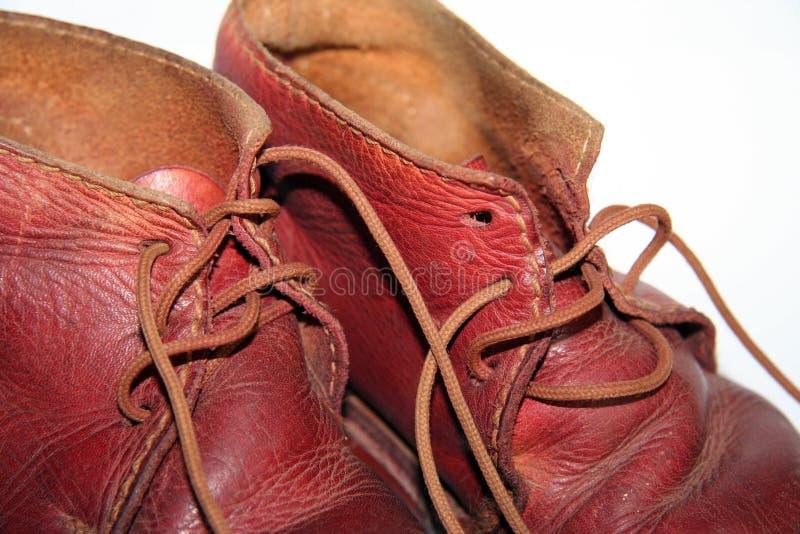 童鞋葡萄酒 库存照片