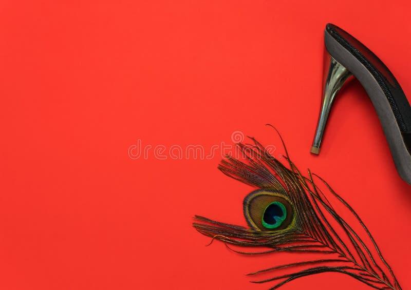 端庄的妇女黑色灰色高跟鞋鞋子有豪华孔雀羽毛销售购物的红色背景 免版税库存照片