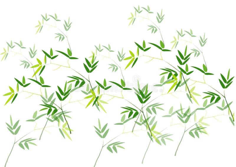 竹叶子,绿色竹传染媒介例证白色背景 向量例证