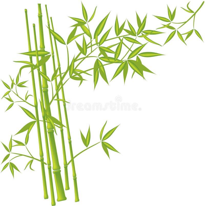 竹向量 库存例证
