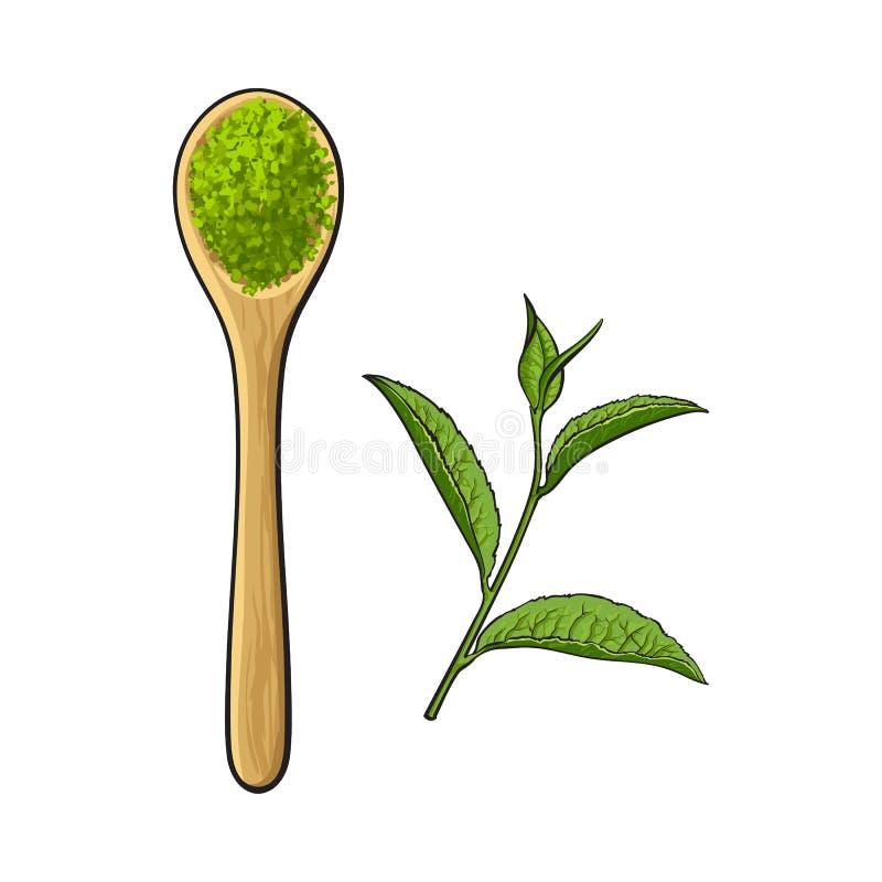 竹子,有matcha绿茶粉末的木匙子图画  向量例证
