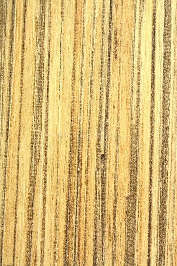 竹子,纹理老木头 免版税库存图片