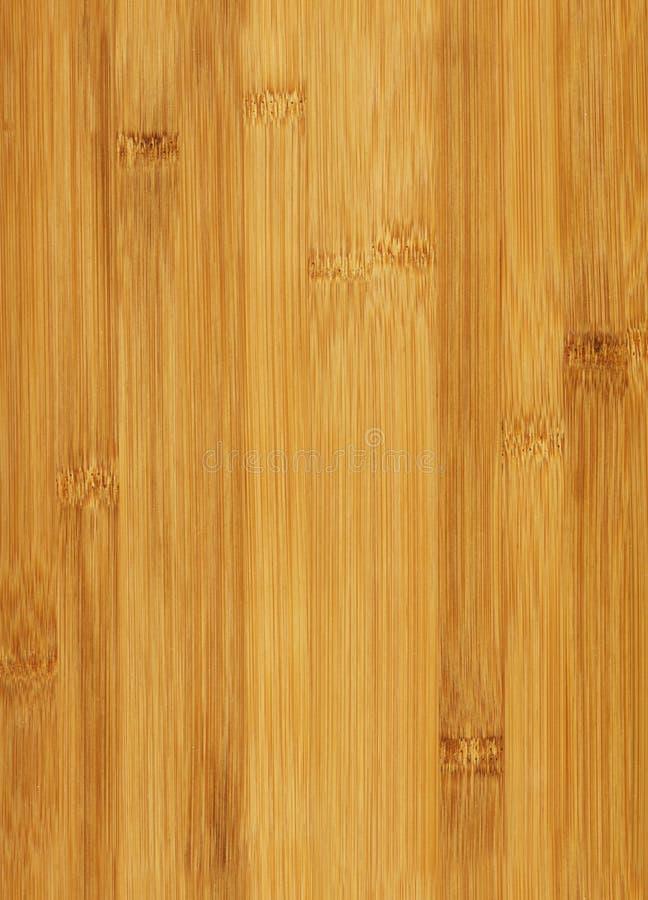 竹无缝的纹理 库存照片