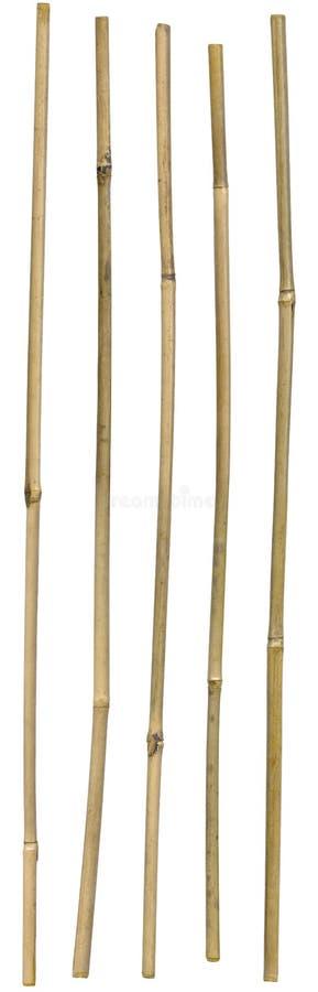 竹棍子 库存图片