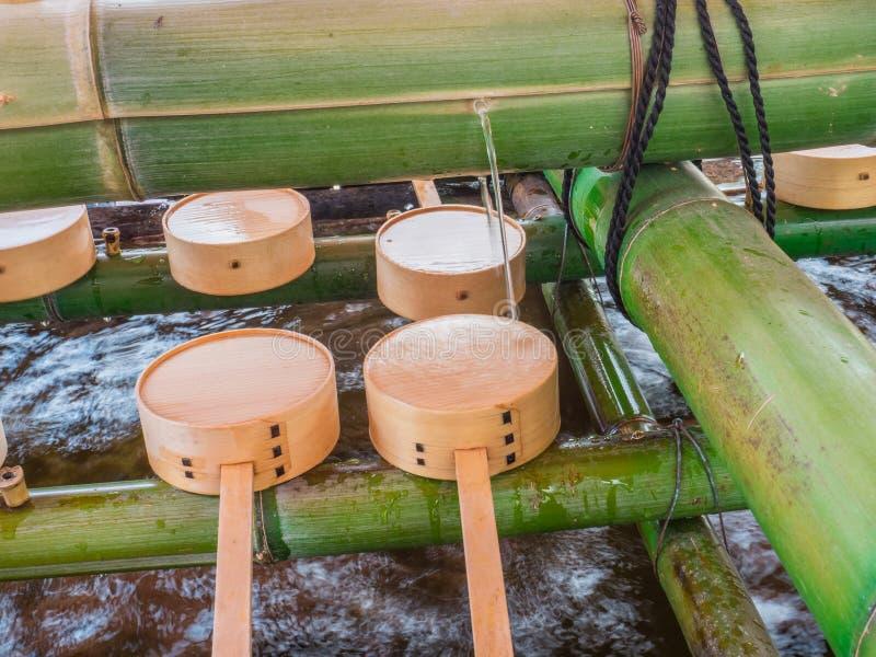 竹浸染工和水在竹子