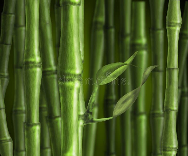 竹深绿色 库存照片