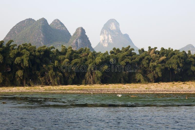竹瓷石灰岩地区常见的地形石灰石 免版税图库摄影
