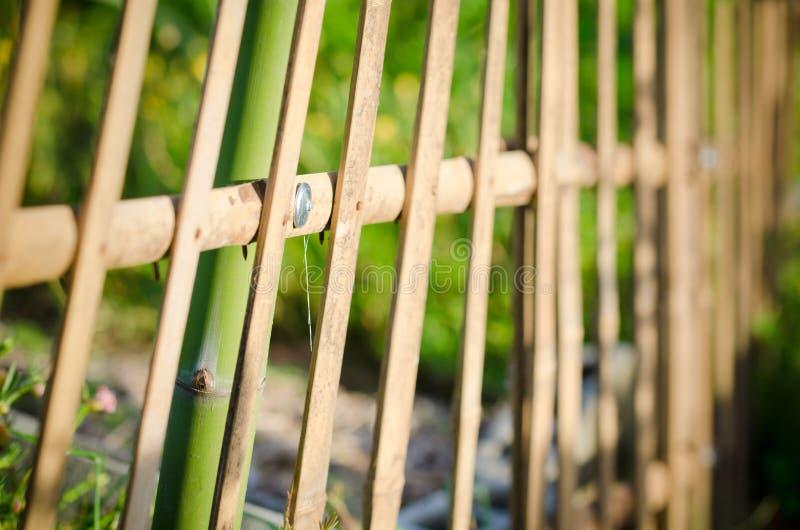 竹篱芭在庭院里 免版税库存照片