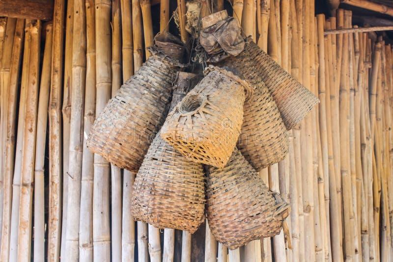 竹鳗鱼陷井酷寒北风泰国样式 库存图片