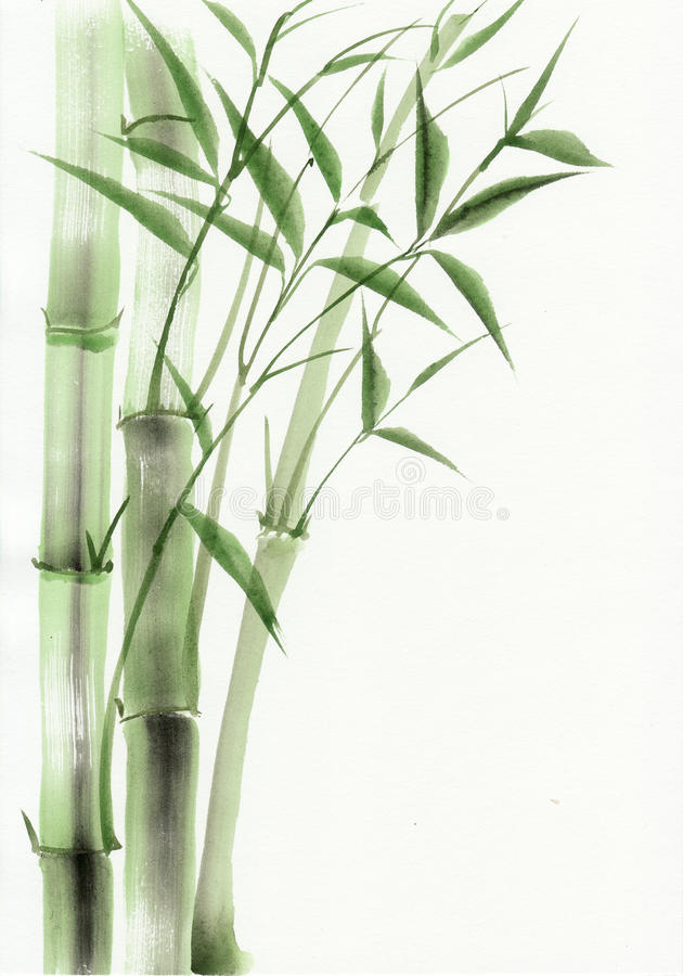 竹水彩绘画 库存例证